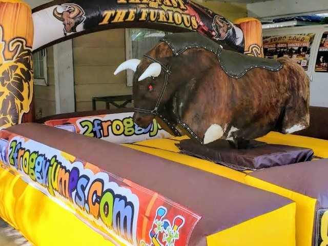 Fast and Furious Mechanical Bull