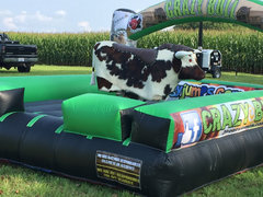 Real Hide! Deluxe Mechanical Bull 2 Hours W/Attendant $̶6̶2̶5̶ Now Only $575 each additional hour only $100