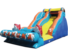 16' Big Kahuna Water Slide