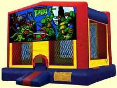 13 ft Teenage Muntant Ninja Turtle