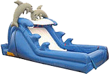 Y 16 ft Dolphin Slide 212A