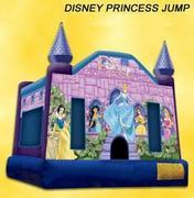 Princess Disney Castle