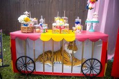 Carnival Circus Cage