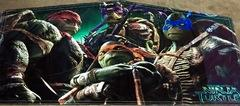 TMNTurtle Rainbow Bounce House