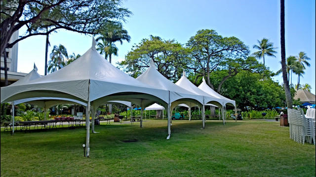 40x60 High Peak Canopy Pagoda Tent