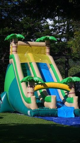 24ft Giant Tropical Slide