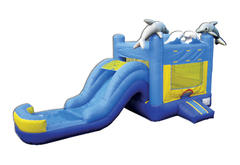 Sea World Wet Slide with Pool Combo