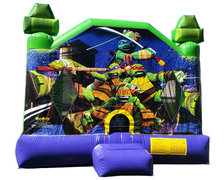 Teenage Mutant Ninja Turtle Bouncer, 15 x 15 LARGE