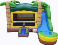 4-1 Tropical Adventure Water Slide Combo (8' slide)