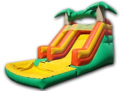 Tropical Water Slide with pool (8 ft slide)