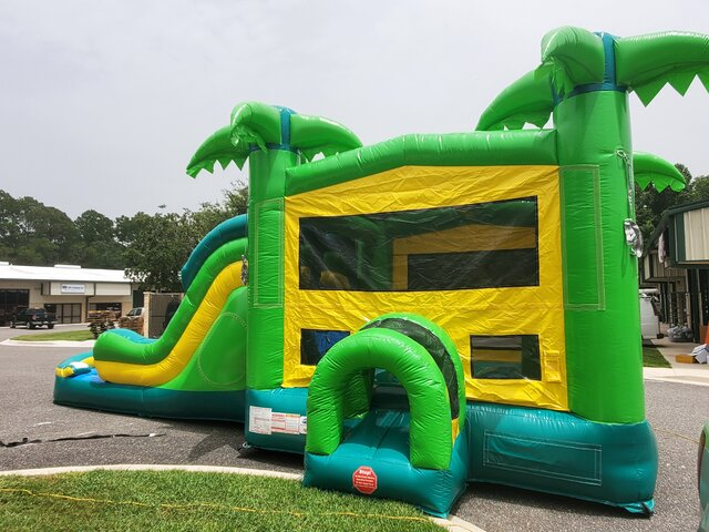Big Dual Lane Amazon 6 in 1 Water Slide / Dry Slide Combo