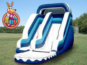 17' Ft. Blizzard Water Slide