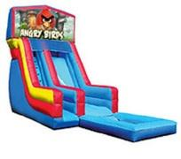 19' Angry Birds Water Slide