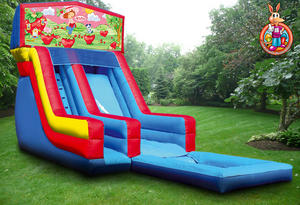 19' Strawberry Shortcake Water Slide