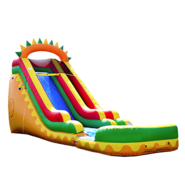 Dino Fun Super Wet/Dry Slide 18