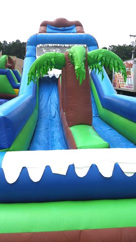 Amazon 2 Lane Water Slide