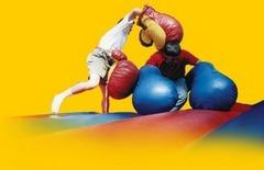Boxing Gloves (Giant Size)