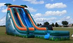 22 Foot Double Lane Dry Slide