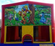Winnie The Pooh Bouncer