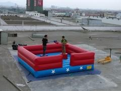 Jousting Arena
