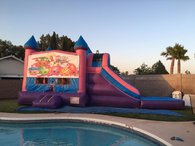 Pink Castle Water Slide Combo