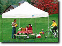 Other Party Needs