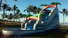 18' Palm Tree Slide