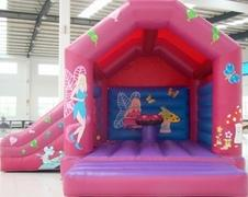 Fairy Slide Combo  FOR AGES UP TO 12