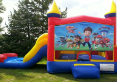 Paw Patrol Wet or Dry Slide Combo