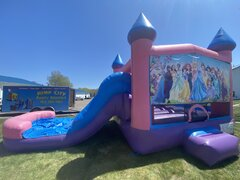 Princess Waterslide Combo - Pink