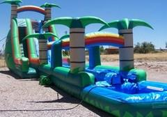 Tropical 65 Ft. L x 22 Ft. H Double Lane Water Slide
