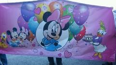 Baby Mice banner