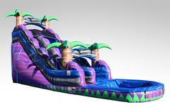 20Ft. Purple Crush Water Slide