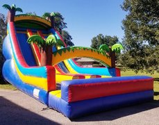 001 Tropical Double Lane Slide 35 feet tall