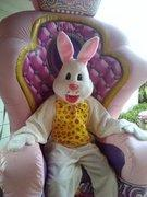 Easter Bunny costume with the employee