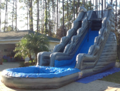 20 Ft dolphin marble slide