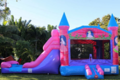 Princes Bounce House Slide Combo