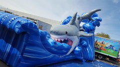 Mako Shark Waterslide #WS9