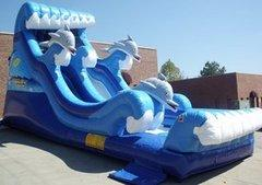 19' High Dolphin Bay Dry Slide (SWD19002)