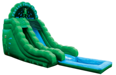 A Freaky Frog Water Slide