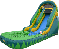 14ft Tropical Tsunami Dry Slide