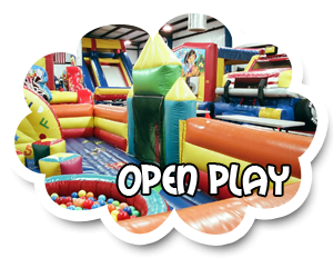 Open Play Party w/ Private Party Room! - 25 Kids