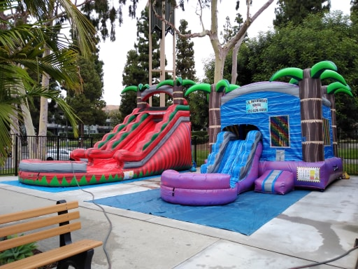 Palm Tree Water Slide Rentals Los Angeles | L.A Inflatables Rental