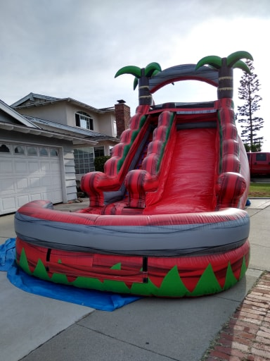 Paradise Palm Tree Water Slide Rentals Los Angeles