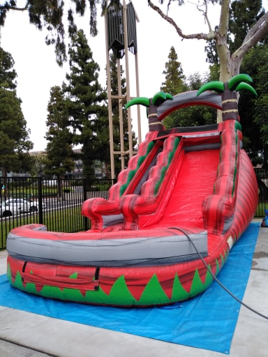 Red Palm Tree Waterslide Rentals Los Angeles