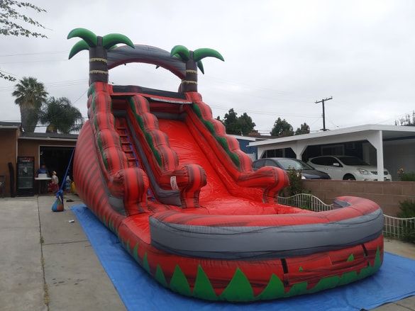 Palm Tree Water Slide Rentals in Los Angeles