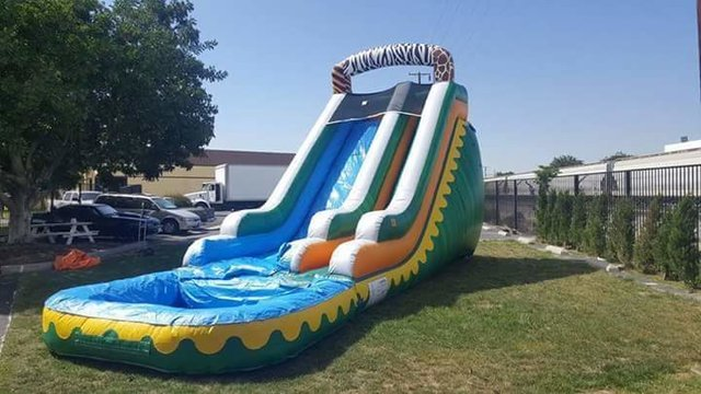Safari Water Slide (with pool) (18'H)