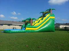 Waterslide Green Tropical