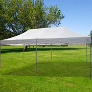 10 x 10 Easy Up Canopy