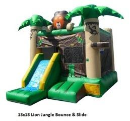 Jungle Jump n Slide Dry